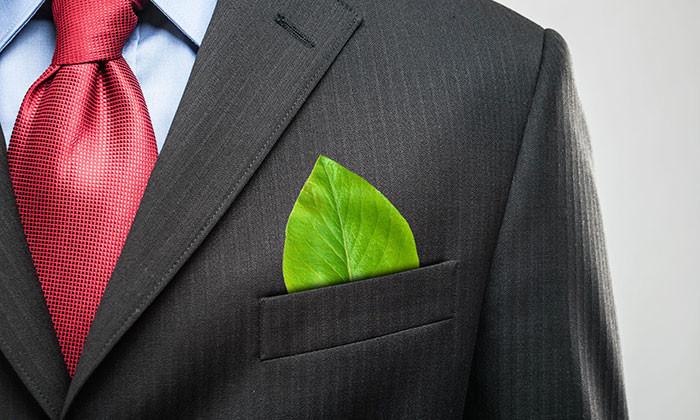 Eco-Savvy Business